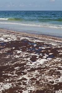BP Oil Spill Claim Attorney